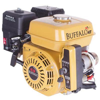 Motor Bfge 4t 15cv Partida Eletrica Buffalo
